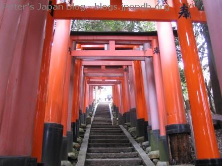 Torii at Fushimi Inari shrine